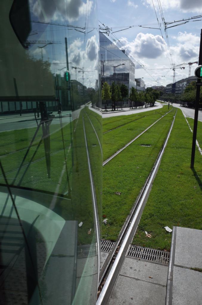 軌道の一部はグリーンゾーン。芝が眩しい!