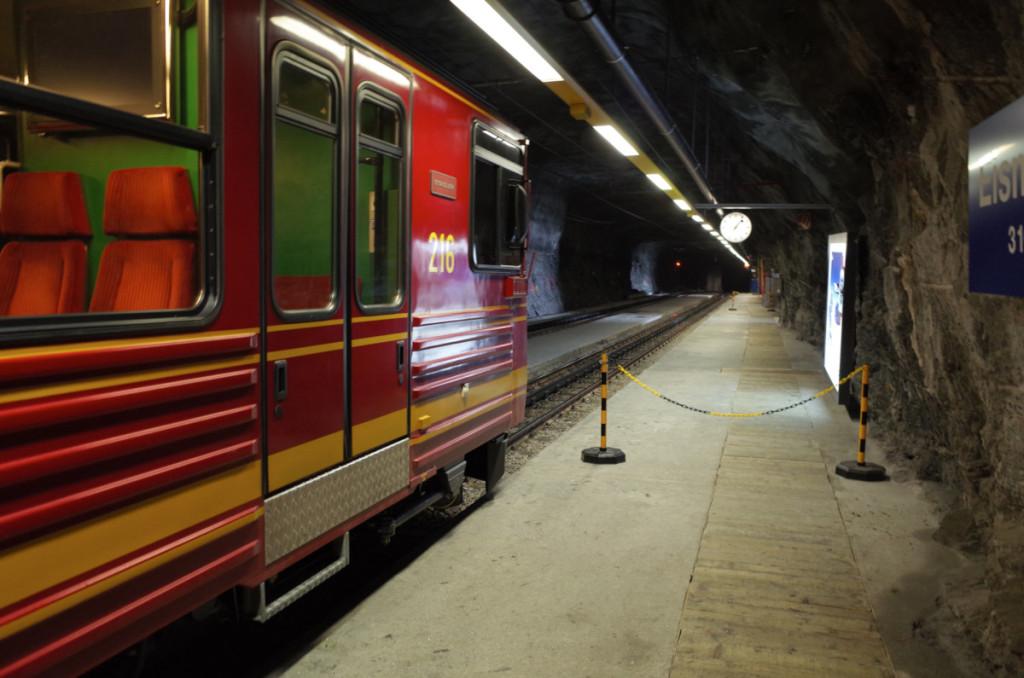 アイスメア駅に停車中。停車する理由は単線なので山頂からの列車と交換しているだけ。こんなところでもトイレとか完備なのが驚きです。