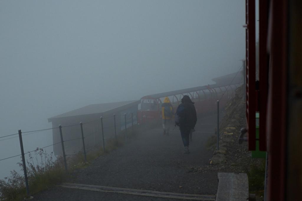 霧はさらに深く(T_T)